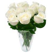 2 Dúzias Rosas Importadas Brancas
