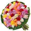 Buquê Festa de Rosas Coloridas