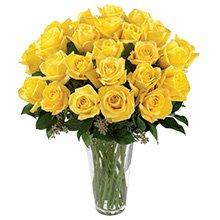 Soneto 36 Rosas Amarelas no Vaso