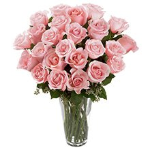 Soneto 36 Rosas Cor de Rosa no Vaso