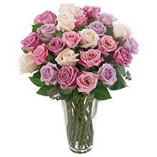 Soneto 36 Rosas Mescladas no Vaso