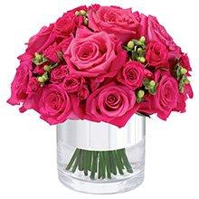 Puro Romance Pink
