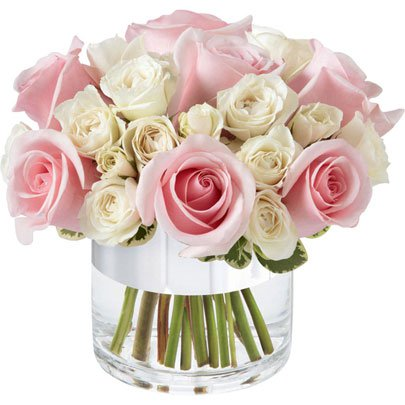 Elegante de Rosas