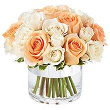 Elegante de  Rosas Champanhe