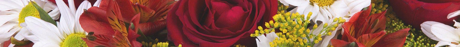 giuliana flores na mídia