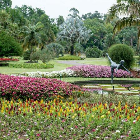 Foto do Jardim Botânico de Nova Odessa