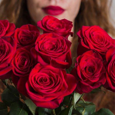 Foto Rosas Vermelhas Mais Vendidas