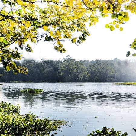 Foto da Represa Billings