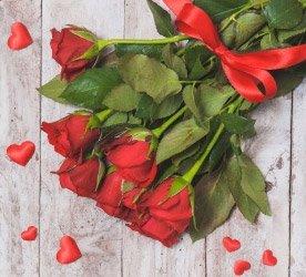 Dicas de conservação das Rosas