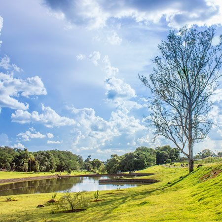 Foto do Jardim Botânico de Londrina