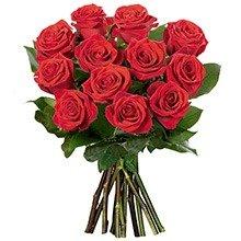 412f17b193d 12 Lindas Rosas Vermelhas