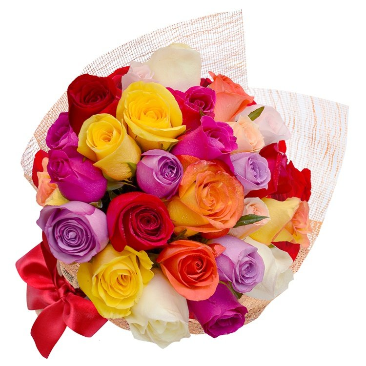 Esplêndido de 18 Rosas Coloridas
