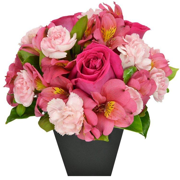 O Segredo da Flor Pink