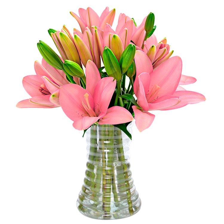 Luxuosos Lírios Rosa no Vaso