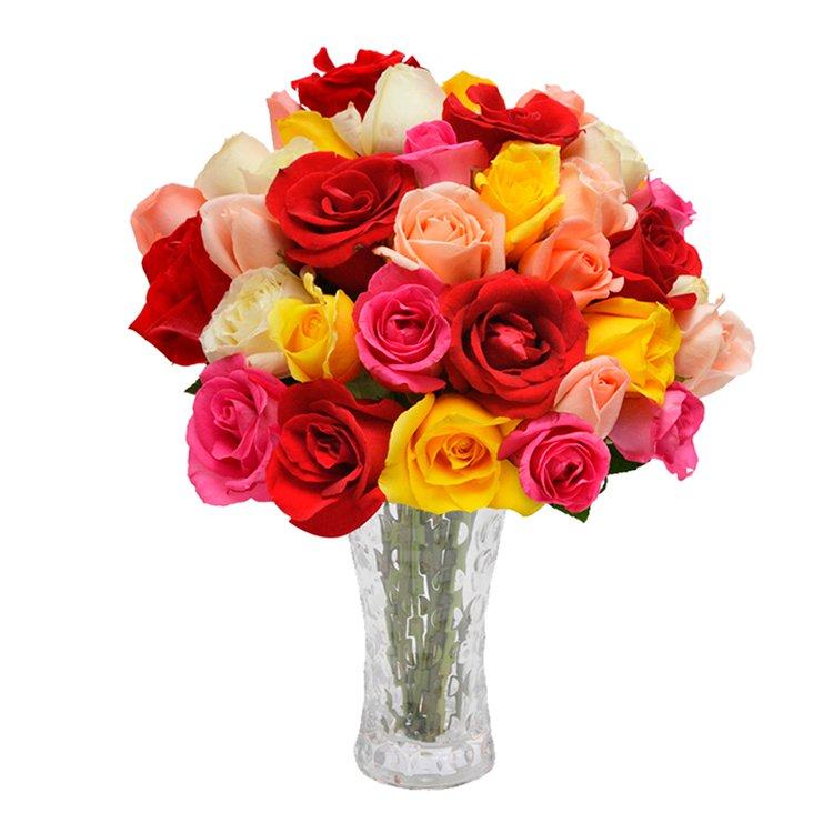 Opção do Amor Colorido 40 Rosas