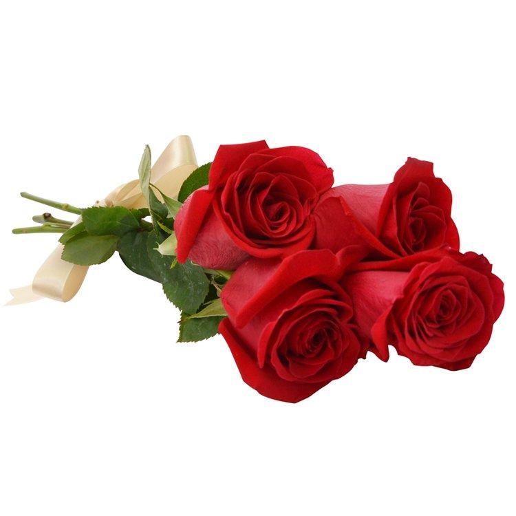 Delicadas Rosas Colombianas