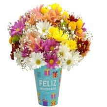 flores de verão: Carinhoso Presente de Margaridas
