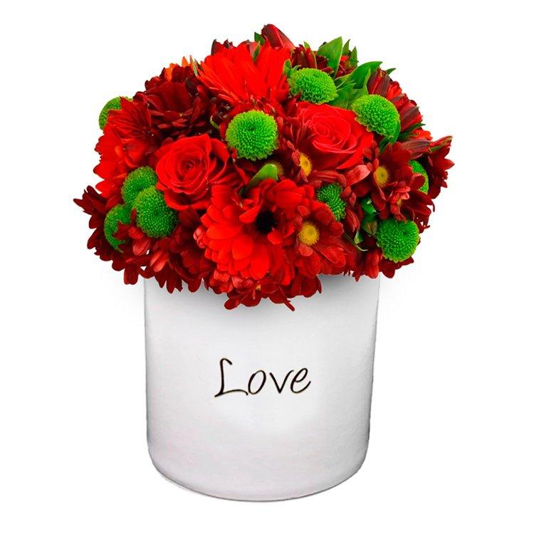 Love para Você