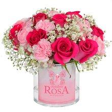 Delicada Poesia Rosa(Outubro Rosa)