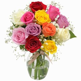 Elegância das Rosas Coloridas