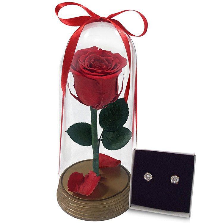 Encanto das Rosas e Brincos