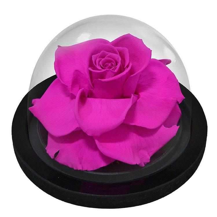 Globo de Rosa Pink