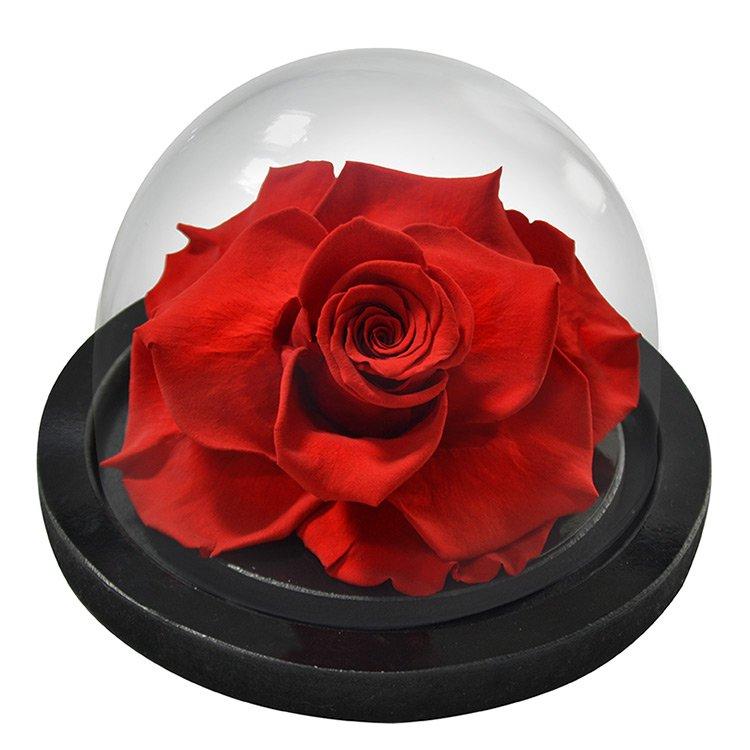 Globo de Rosa Encantada Vermelha