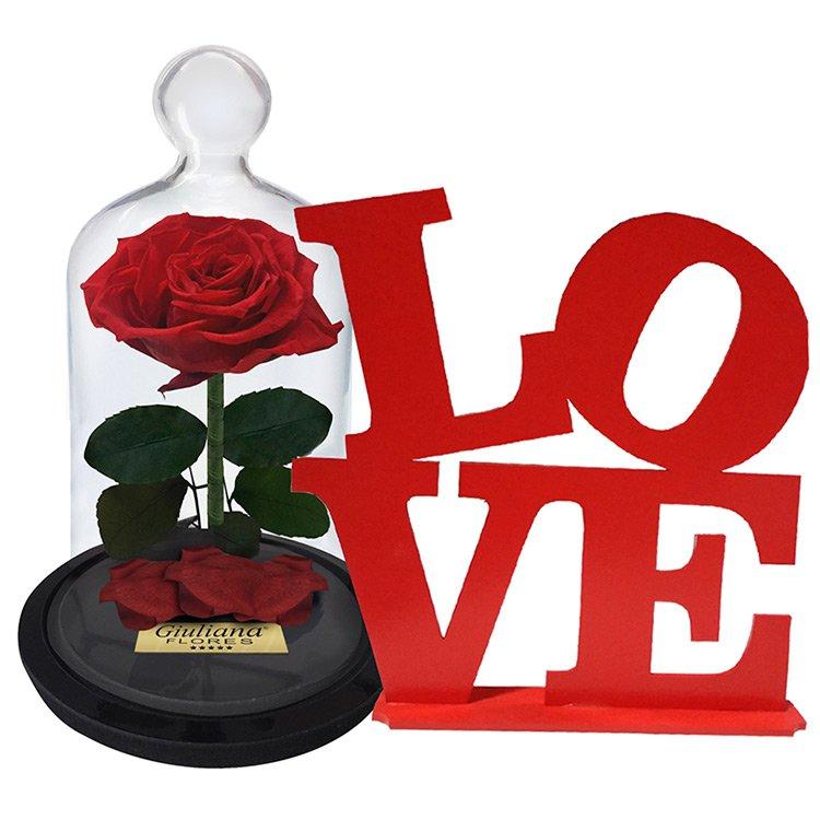 Rosa Encantada P e Placa Love