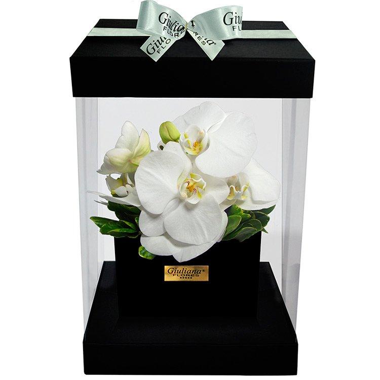 Flower Box Orquídea Branca