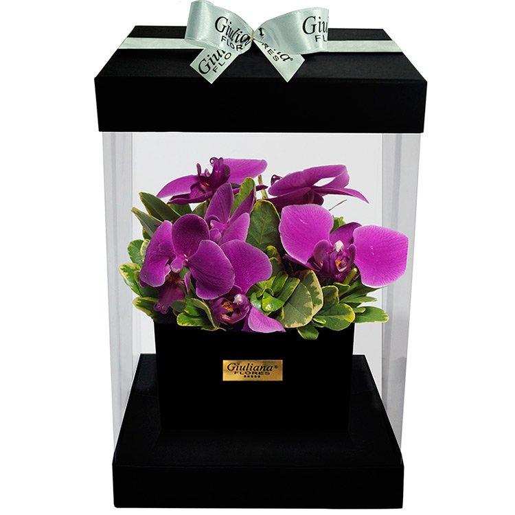 Flower Box Orquídea Pink