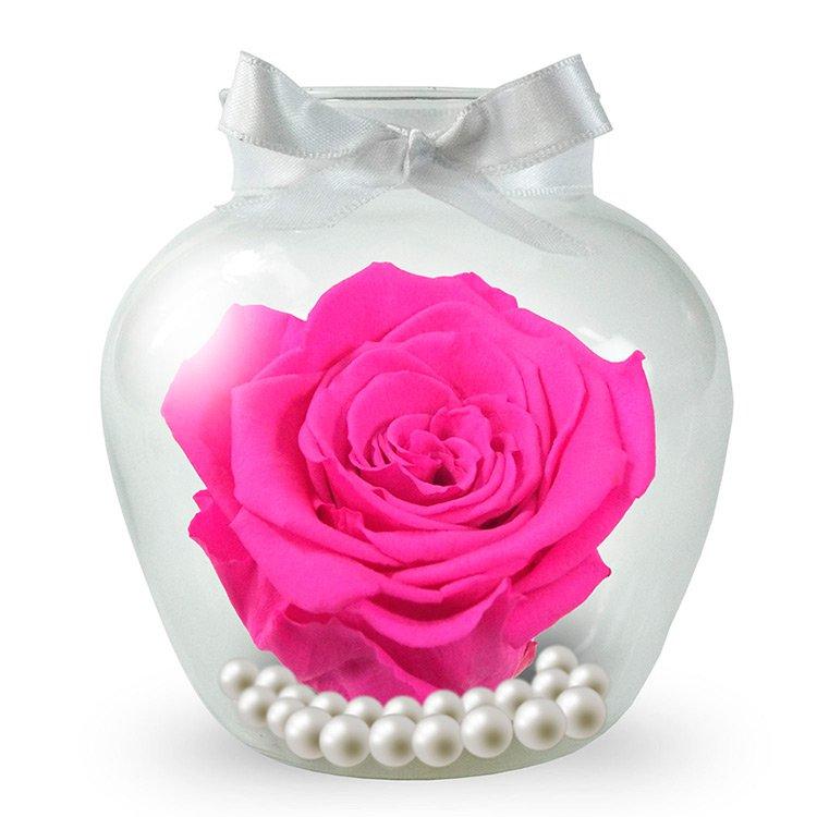 Rosa Encantada Cor de Rosa no Vaso