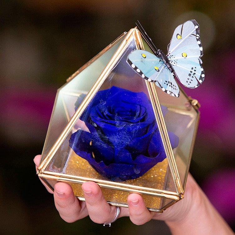 Pirâmide de Rosa Encantada Azul
