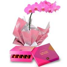 Orquídea Pink e Caixa Corações Trufados Ofner