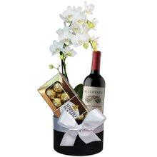Sofisticada Mini Orquídea Branca e Vinho