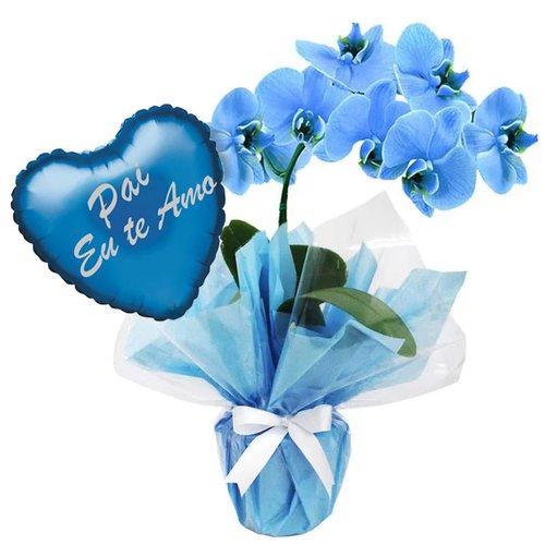 Orquídea Phalaenopsis e balão Pai eu Te Amo azul