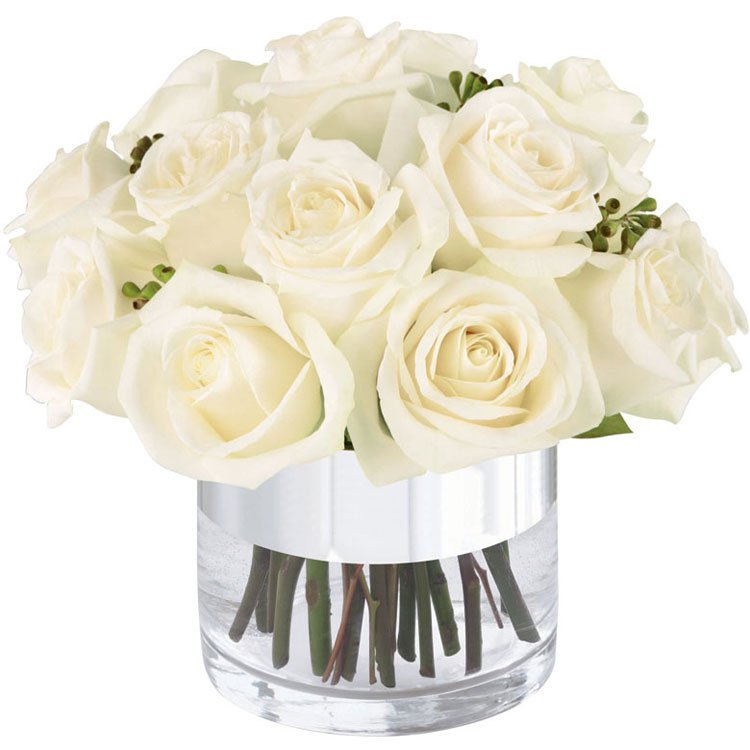 Sutileza de Rosas Brancas